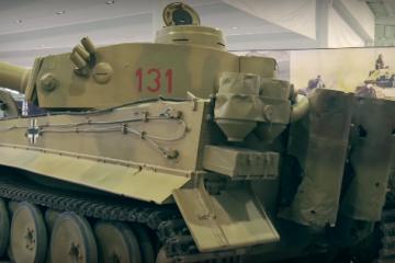 Tiger-113