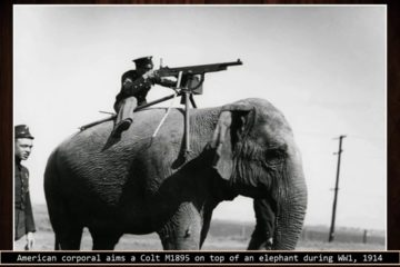 75 Rare Historical images you have to see before you Die