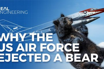 Here is the story of Why The US Air Force Ejected a Bear